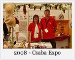 2008 - Csaba Expo